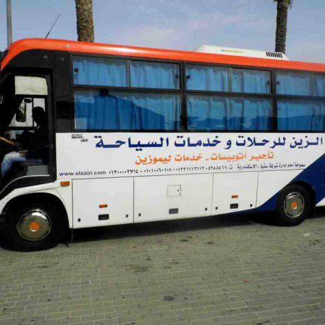 33-bus