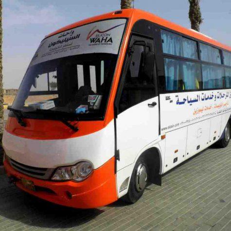 33 passenger buses