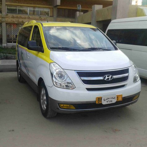 elzain_limousine (2)